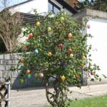 Traditioneller Eierbaum