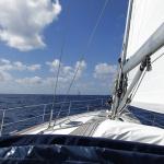 Das ist happy sailing
